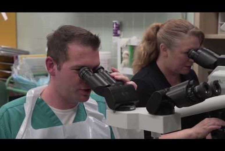 Pathologists' Assistant, MHS video